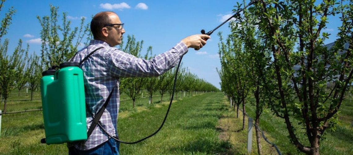 male-agronomist-treating-apple-trees-with-pesticides-orchard (1)